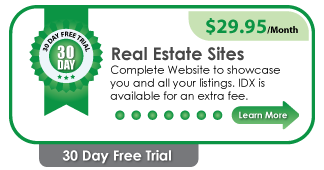 Real Estate Sites Pricing